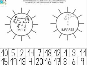 ORGANIZADOR GRÁFICO PARES IMPARES
