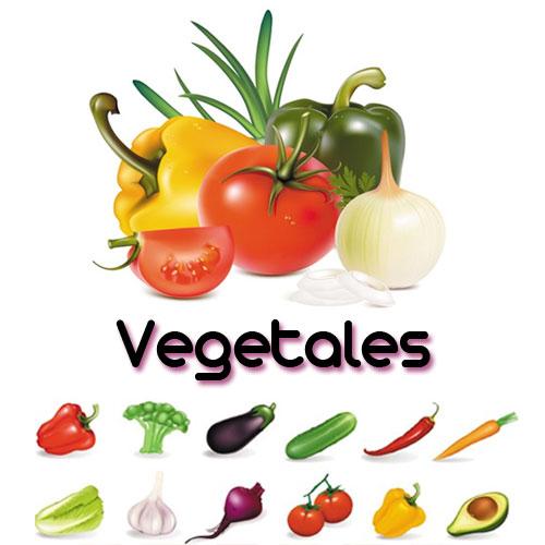 Vocabulario de frutas y verduras castellano y valenciano - Verduras lista de nombres ...