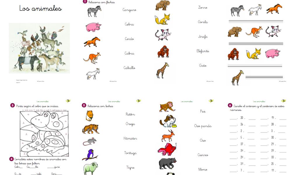 adaptacion-ciencias-los-animales