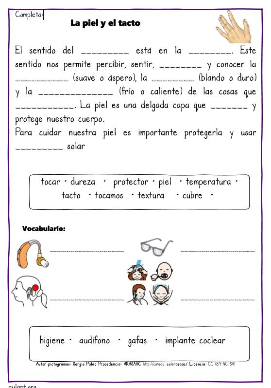 Actividades De Comprensión Lectora Los Cinco Sentidos Aula Pt